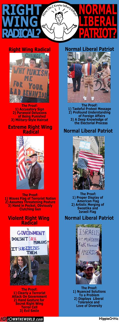 radicalorliberal1