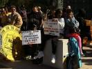 One Nation of  Moonbats March on Washington