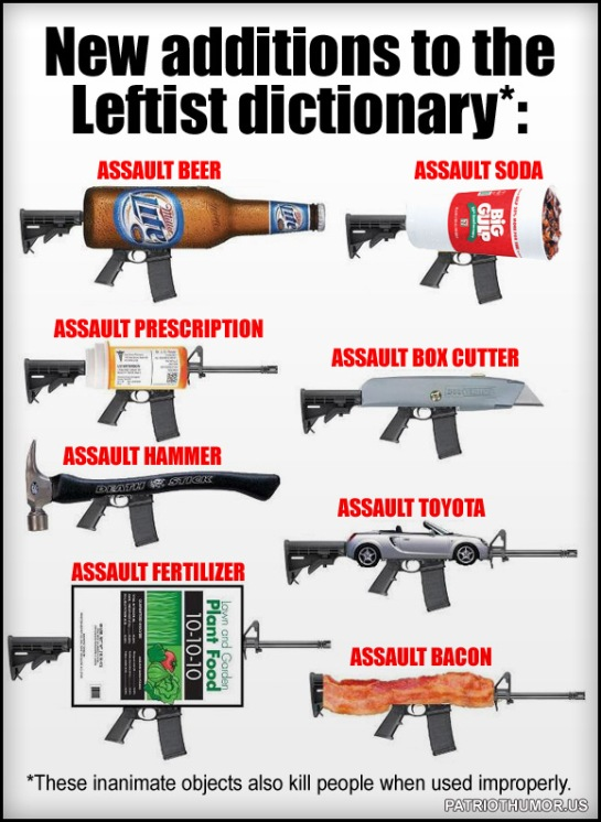 leftist dictionary