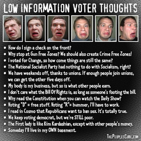 low-information-voter-thoughts